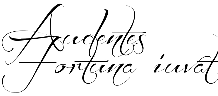 "Super Audentes Fortuna iuvat"" - tattoo phrase, download free scetch MH09"